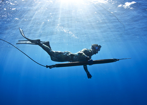 spearfishing blue water mexico