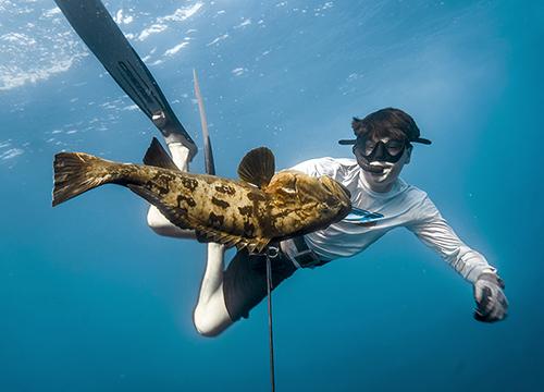 spearfishing baja california mexico